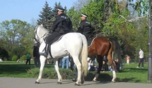 Politia calare din Iasi, o investitie de 60.000 de euro